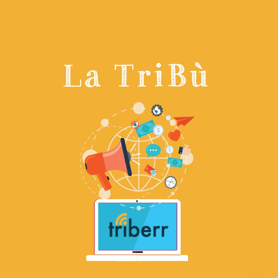 Triberr, condividi i post con la tribù per far crescere il tuo blog