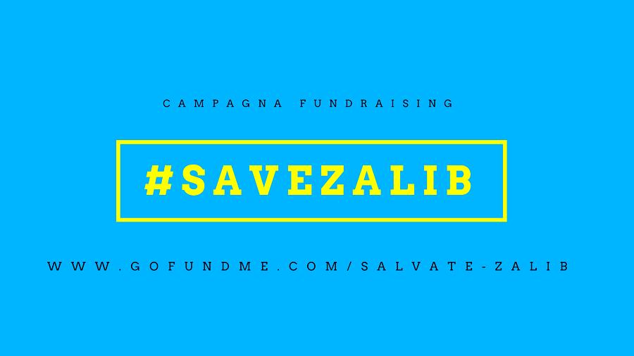 Zalib: libreria rischia di chiudere. Save Zalib